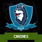 Canine Elite Quest Badge