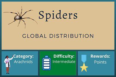 Spider Habitat – Global Distribution